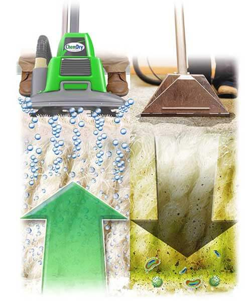 chem-dry pulls contaminants up, steam cleaners push them down into carpets