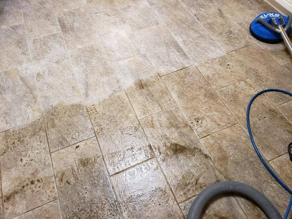 chem dry 98.6% of bacteria from tile